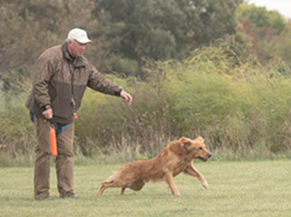 man-training-dog